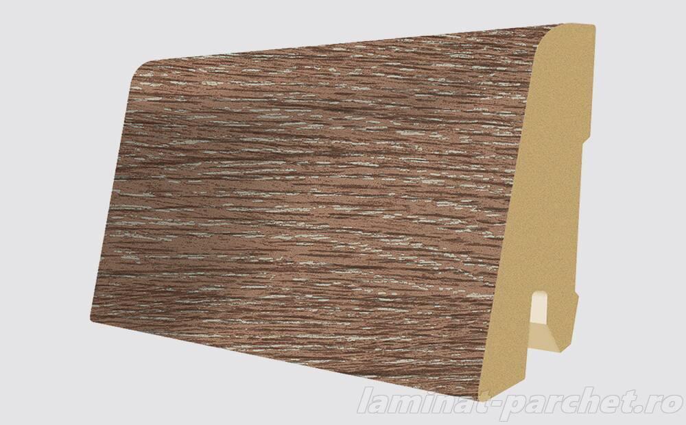 Plinta asortata Egger L402