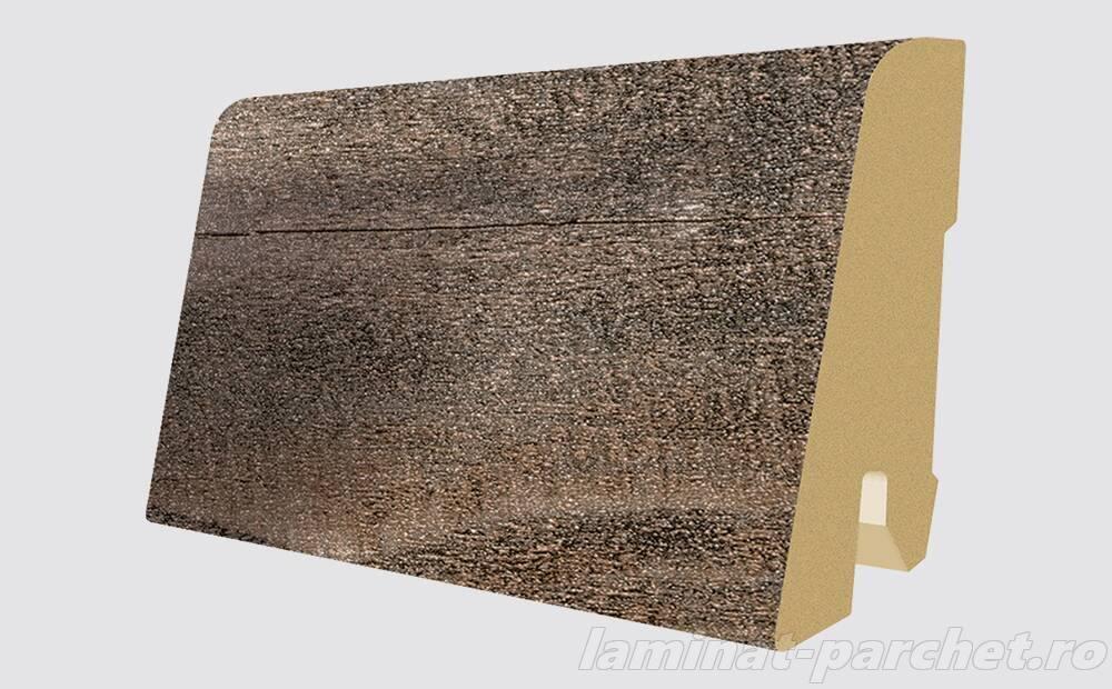 Plinta asortata Egger L456