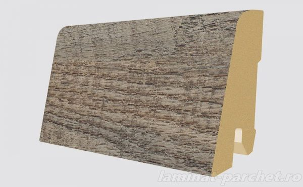 Plinta asortata Egger L496