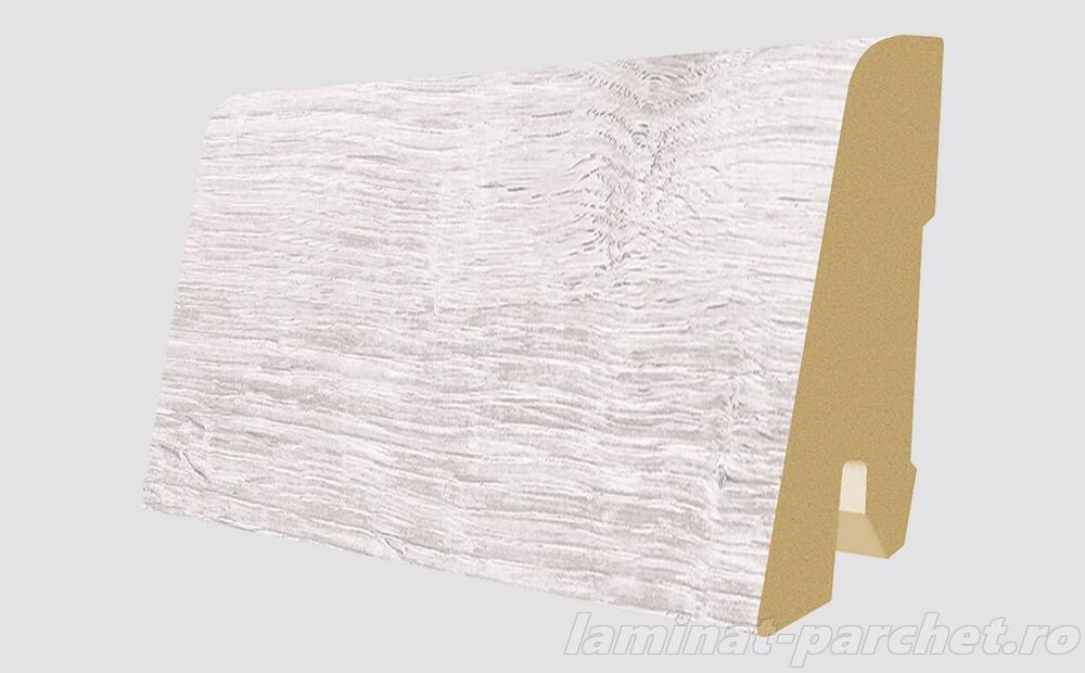 Plinta asortata Egger L511