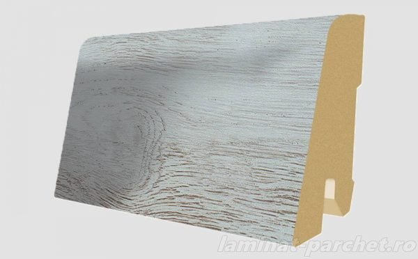 Plinta asortata Egger L527